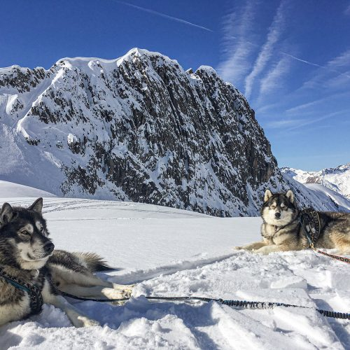Husky Mountaineering Winter
